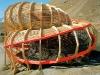 ракушка из дерева